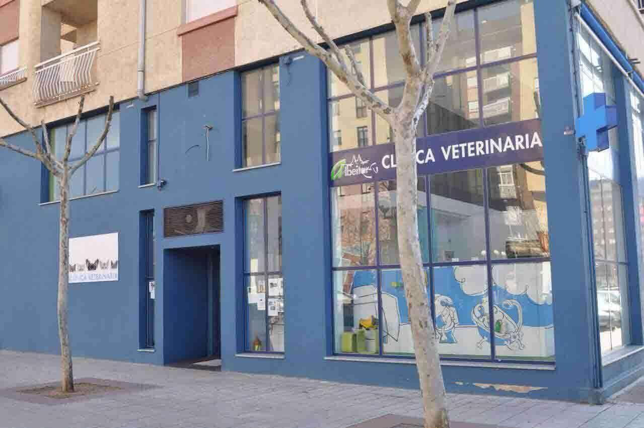 Cl�nicas Veterinarias Zamora Albeitar