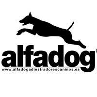 Adiestradores Caninos Alfadog