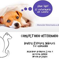 Clinias Veterinarias Altorreal Altorreal