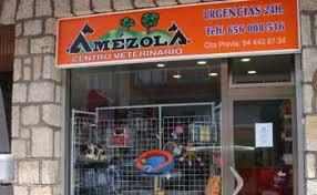 Clinicas Veterinarias Vizcaya Etorbide
