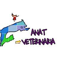 Clinicas Veterinarias Vizcaya Anat