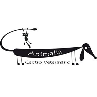 Clinicas Veterinarias Valladolid Animalia