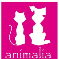 Clinicas Veterinarias Pamplona Animalia Ezkada