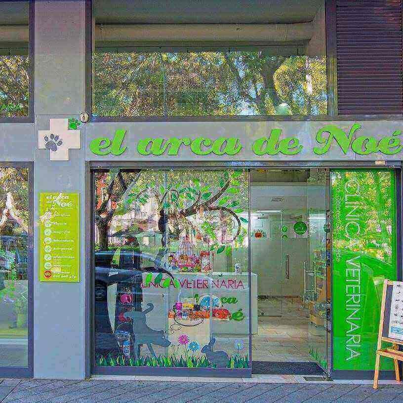 Clinicas veterinarias Valladolid Arca Noe