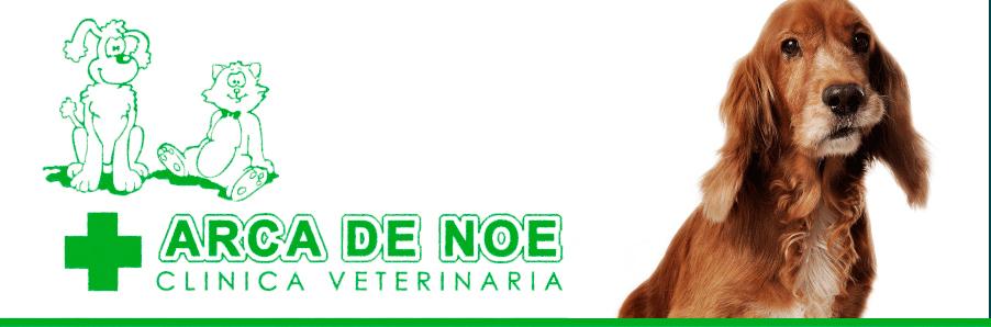 Clinica Veterinaria Merida Arca de Noe