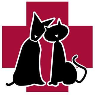 Clínicas veterinarias Gijon ASTURPET