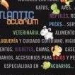 Atlantic Acuarium