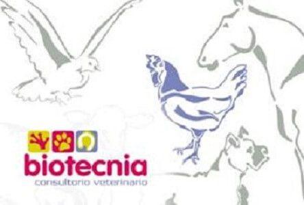 Biotecnia