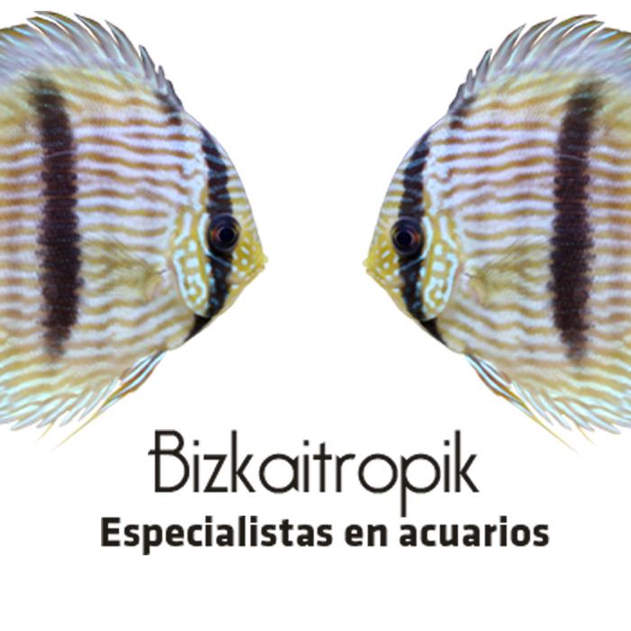 Tiendas Mascotas Vizcaya Bizkaitropik