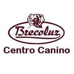 Adiestradores Caninos Huelva Brecoluz