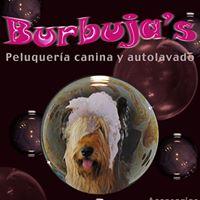 Tienda Mascotas Santa Marta de Tormes Burbuja