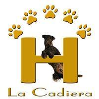 Residencias mascotas Avila La Cadiera