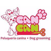 Peluquerias Mascotas Zaragoza Can Can