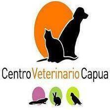 Clínicas veterinarias Gijon Capua