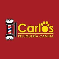 Peluquerias Mascotas Badajoz Carlos