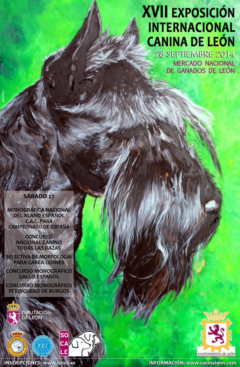 XVII Exposici�n Internacional Canina de Le�n