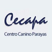 Adiestradores caninos Cantabria Cecapa