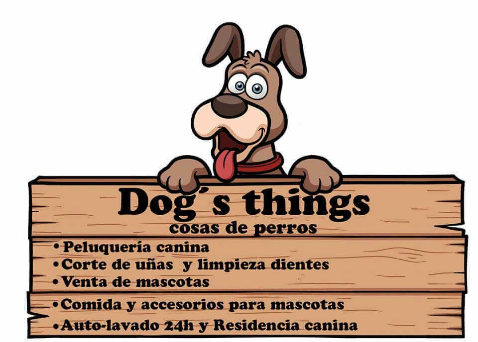 Dogs things