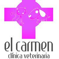 Clinicas veterinarias Valencia El Carmen