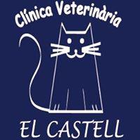 Clinicas Veterinarias Valencia El Castell
