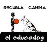 Adiestradores Caninos León El Educadog
