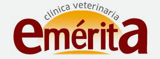 Clinica Veterinaria Mérida Emérita