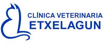 Clinicas Veterinarias Vizcaya Etxelagun