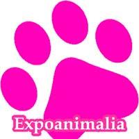 Tienda Mascotas Villareal Expoanimalia