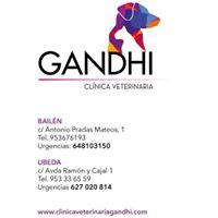 Clinicas Veterinarias Úbeda Gandhi