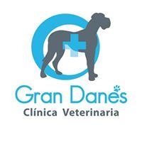 Clinicas Veterinarias Aranda de Duero Gran Danes