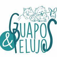 Tienda Mascotas Valladolid Guapos&Pelujos