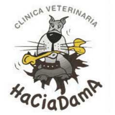 Clínicas veterinarias Coruña HaciaDama