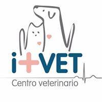 Clínicas veterinarias Oviedo I+VET