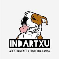 Residencia Mascotas Alava Indartxu