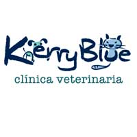 Clinicas Veterinarias Oviedo kerry Blue