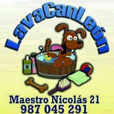 Peluqueria Canina León Lavacan