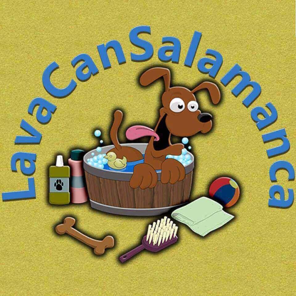 Peluquerias mascotas Salamanca Lavacan Salamanca