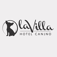 Adiestradores Caninos Valencia La Villa