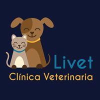 Clinicas Veterinarias Burlada Livet