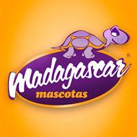 Adiestradores caninos Alicante Madagascar