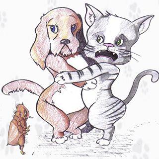 Peluquerias mascotas Pontevedra Malas Pulgas