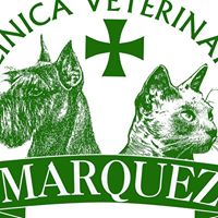 Clinicas Veterinarias Caceres Márquez