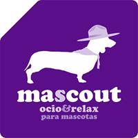 Residencia Mascotas Caceres Mascout