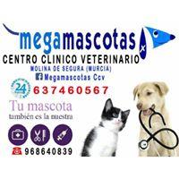 Clinicas Veterinarias Molina de Segura Megamascotas