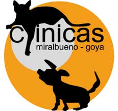Clinicas Veterinarias Zaragoza Miralbueno