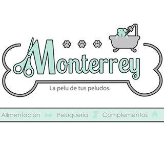 Peluquerias mascotas Pontevedra Monterrey