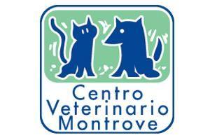 Clínicas veterinarias Coruña Montrove