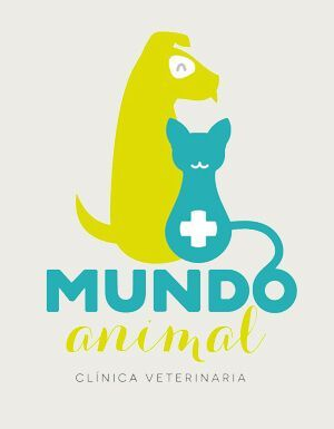 Clinicas Veterinarias Valladolid Mundo Animal Zaratan