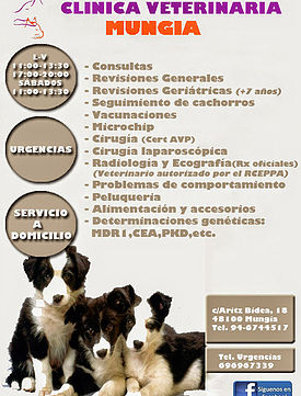 Clinicas Veterinarias Vizcaya Mungia