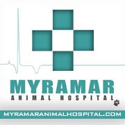 Clinicas Veterinarias Fuengirola Myramar